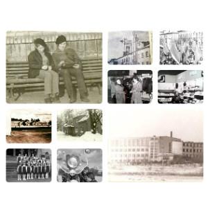 Tarp 1981 ir 1990
